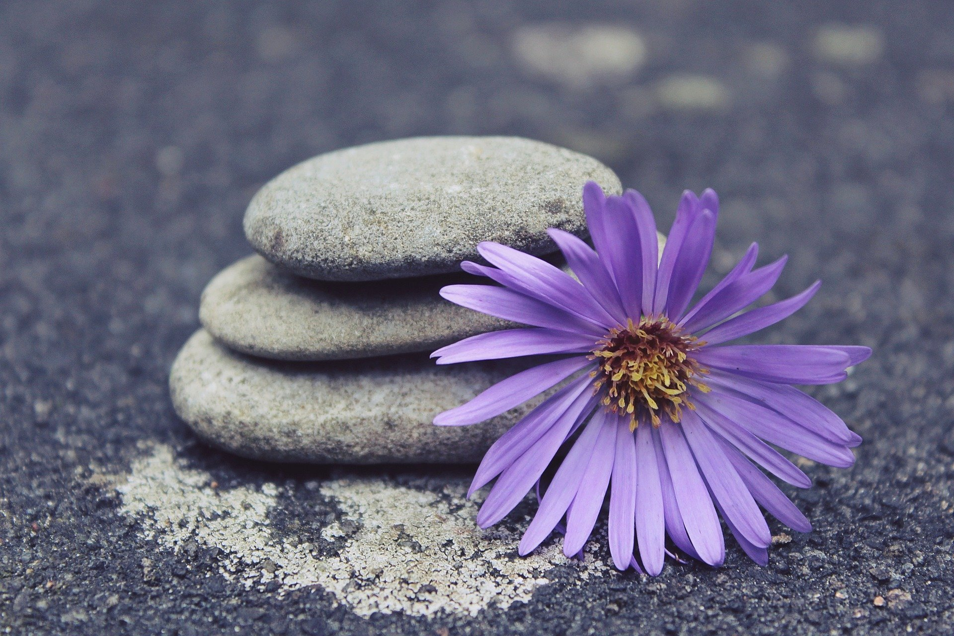 Read more about the article This Grounding Technique Can Help You Feel In Control of Your Life