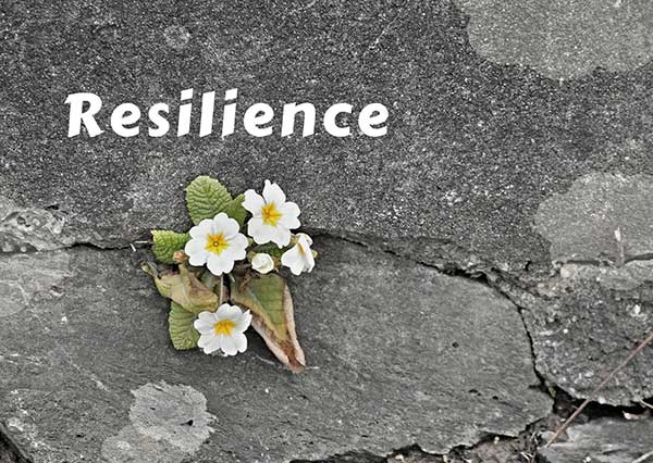 Read more about the article 10 Skills to Build Resilience When You Have Small Business Anxiety Now
